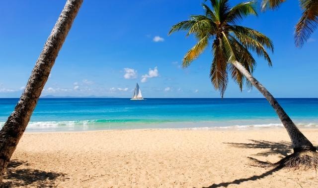 Guadeloupes Strände, hier zu sehen Sainte Anne.