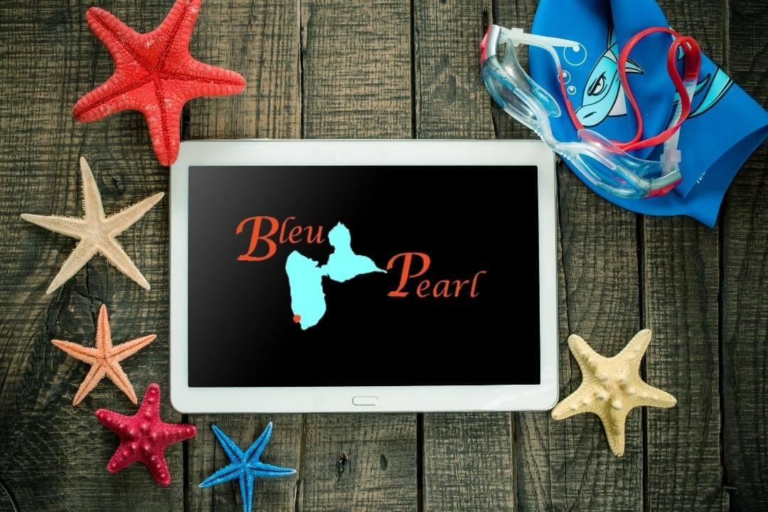 Tour X BleuPearl's Tour X - Vorbereitung